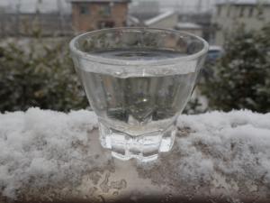 真冬の雪景色と共に撮影したミジンコ