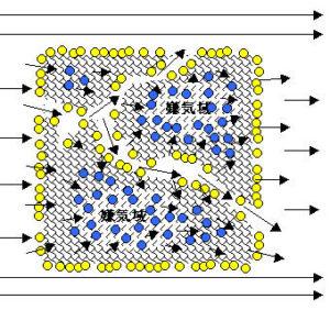洗車スポンジ濾材の働きを示す模式図