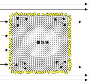 一般的なスポンジ濾材の働きを示す模式図