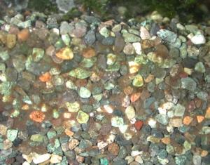 水槽に敷いた大磯砂の断面をガラス越しに見たところ