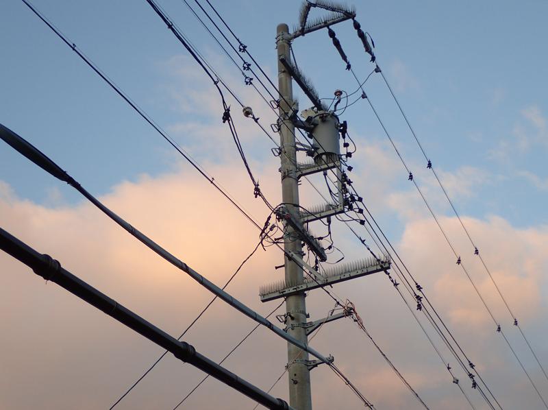 鳥害対策された電線と電柱
