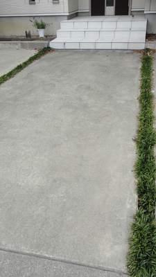玄関のアプローチに植えたタマリュウ