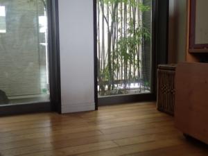 北側の窓越しに見える坪庭