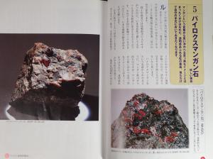 パイロクスマンガン石の紹介 新・きらめき鉱物・化石ガイド―愛知県版