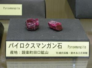 鳳来寺山自然科学博物館に展示されているパイロクスマンガン石