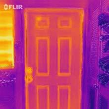 サーモカメラで玄関を撮影した例