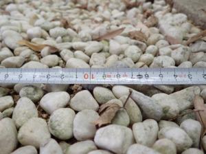 粒サイズ2cm前後の砂利の例