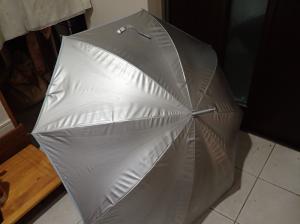 リーベンのひんやり傘