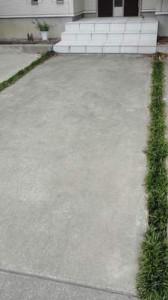 アプローチの溝に植えたタマリュウ