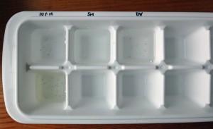 製氷皿を使って換水法による脱水作業をしている様子