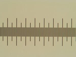 TAMC500+リレーレンズ(ToupTek FMA050 x0.5)による撮影例2