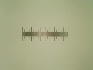 TAMC500+リレーレンズ(ノーブランド x0.5)による撮影例1