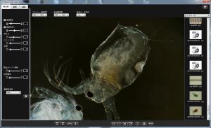 撮影ソフト MicroCam の実行画面