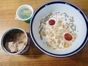 ダイエット食の例