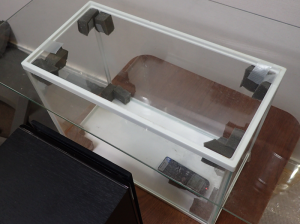 ガラス水槽の角に吸音材を設置して定在波を防止する実験をしている様子