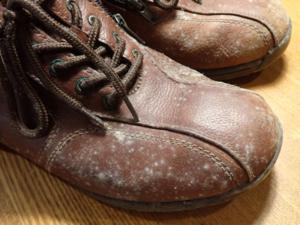 カビてしまった革靴