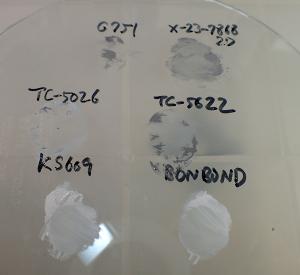各種CPU放熱グリスをガラス板に対し薄塗りした結果