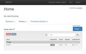 NVIDIA DIGITS の実行画面