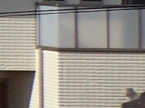 オリンパスTG-4の撮影画像(右端等倍切り出し)