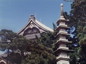 豊川稲荷の庭園から見た本殿