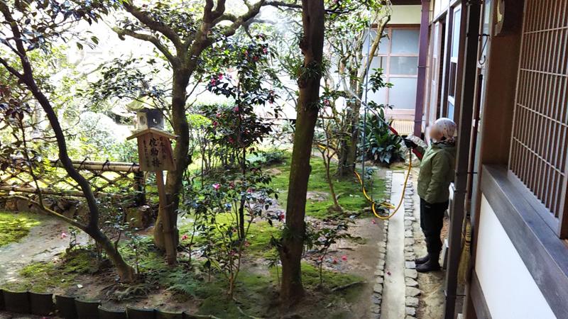 龍安寺の庭を手入れしている様子